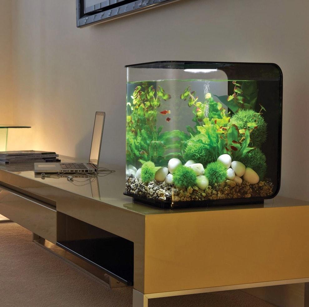 Как сделать аквариум своими руками из силикатного стекла 78