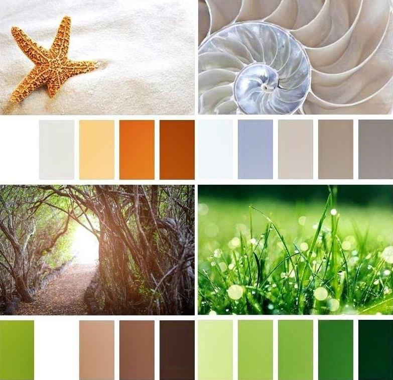 Экостиль в интерьере: цвета