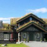 Большой загородный дом с травяной крышей