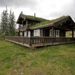 Дом в норвежском стиле - фото