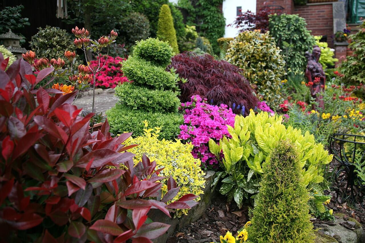 Кустарники в английском саду