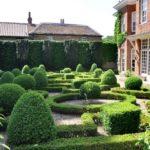 Сад в регулярном стиле - фото