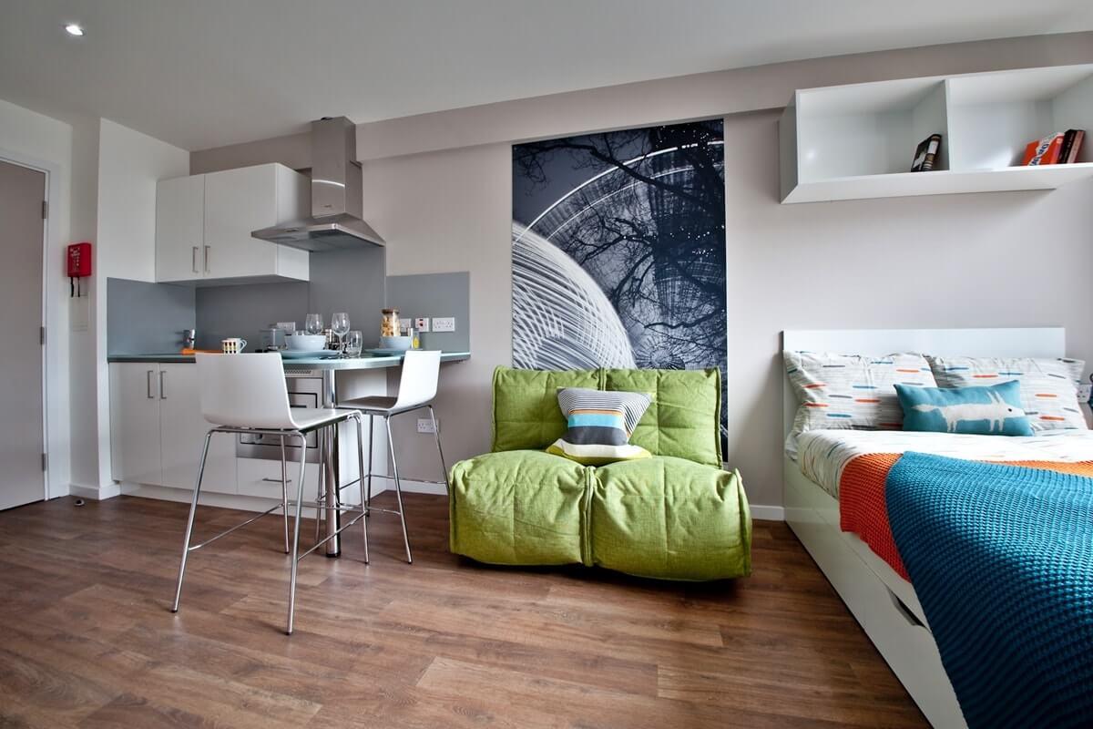 Интерьер однокомнатной квартиры - фото 7
