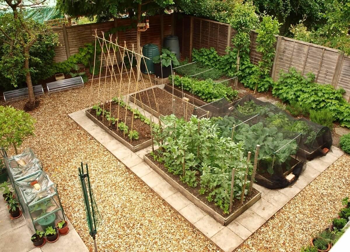 Огородная зона на дачном участке