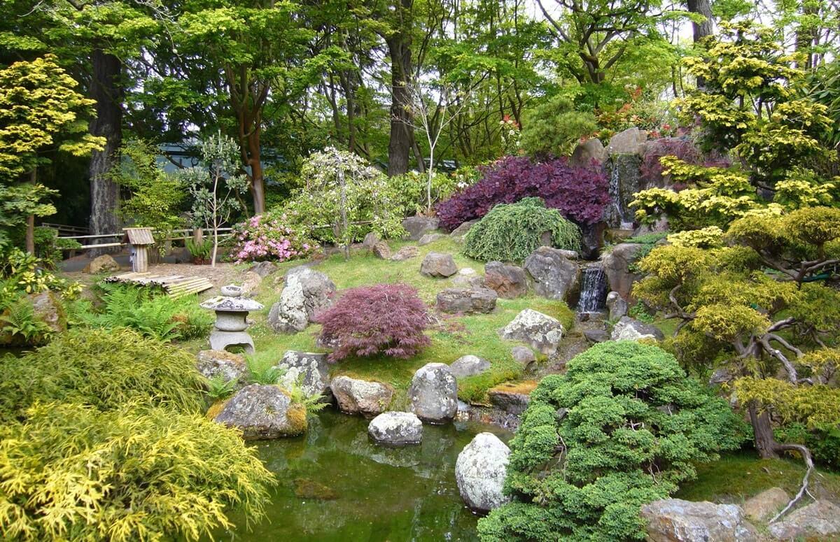 Цвета японского сада
