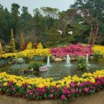 Смеющийся сад в китайском стиле
