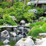 Угрожающий сад в китайском стиле