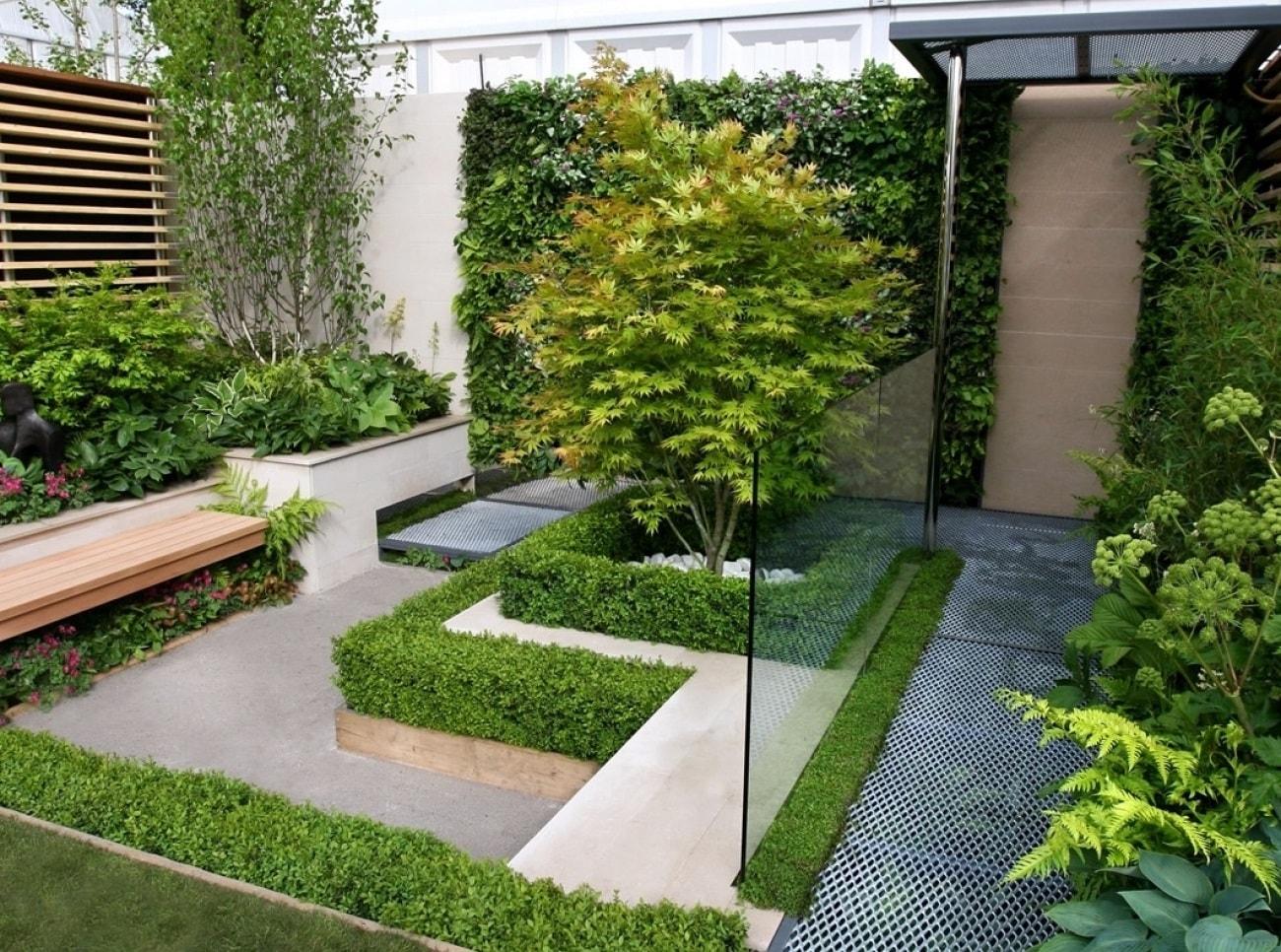 Вертикальное озеленение в минималистичном саду