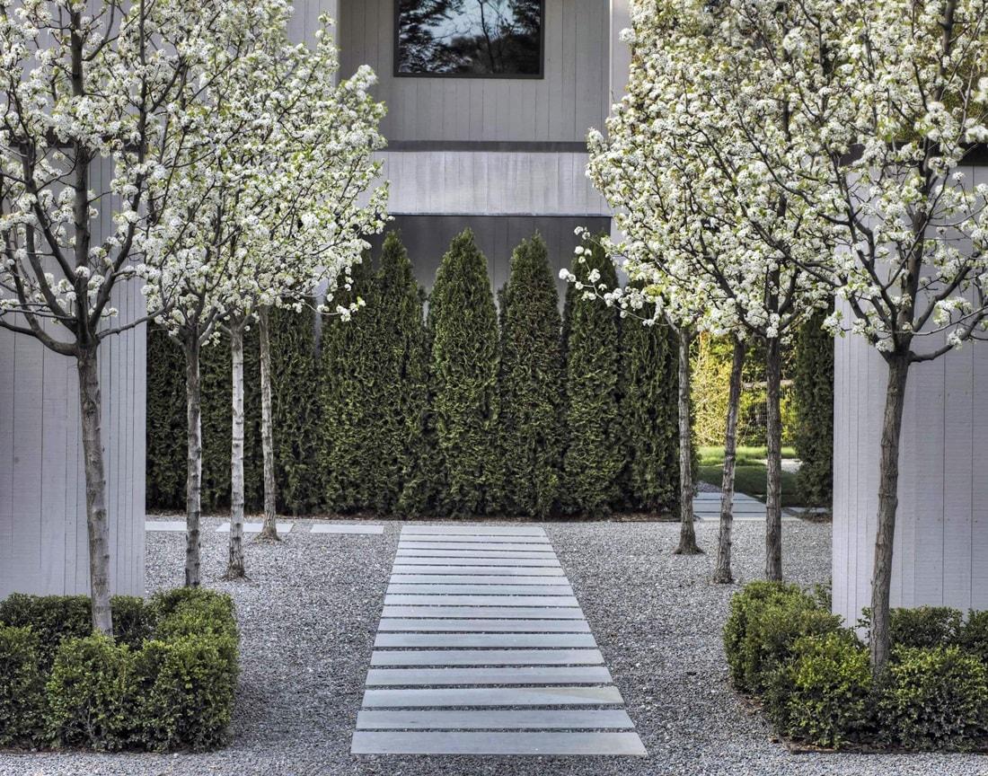 Ландшафтный дизайн в стиле хай-тек - деревья