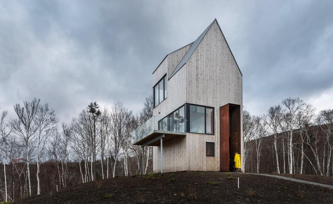 Трехэтажный каркасный дом - фото