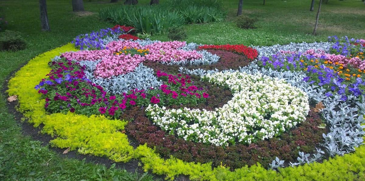 Виды цветников - арабеска