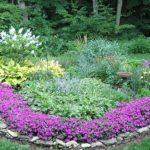 Цветочный бордюр вокруг клумбы